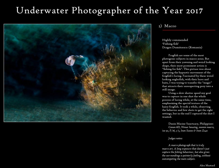 #UPY2017 Macro Fishing Fish Photography competition Underwater dragos dumitrescu highly commended